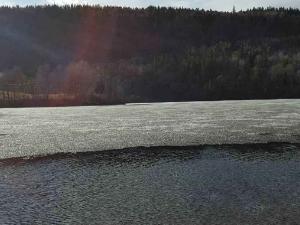 Bildet viser et islagt vann der isen løsner fra land. Vi setter da isdekningen til isløsning langs land, is utpå