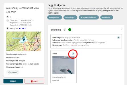 Et skjermbilde fra websiden Regobs.no. Bildet viser hvordan man redigerer og legger til bildeinformasjon.