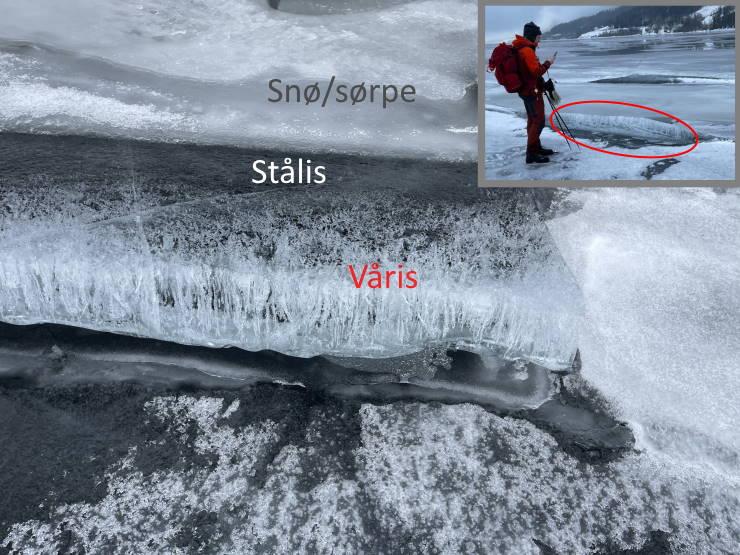 Bildet viser vårisdannelse i et isflak som er blitt eksponert for sol og mildvær.
