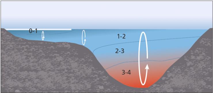 Figuren viser hvorfor vannmassene avkjøles senere på de dypeste partiene av en innsjø.